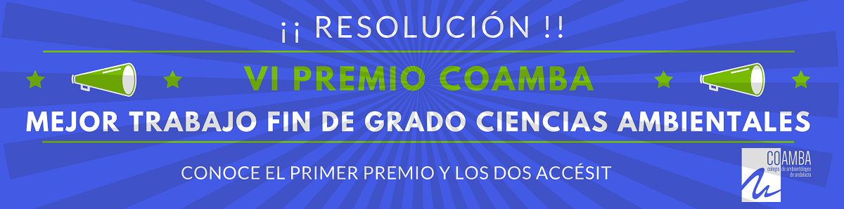 Resolución VI Premio TFG RRSS