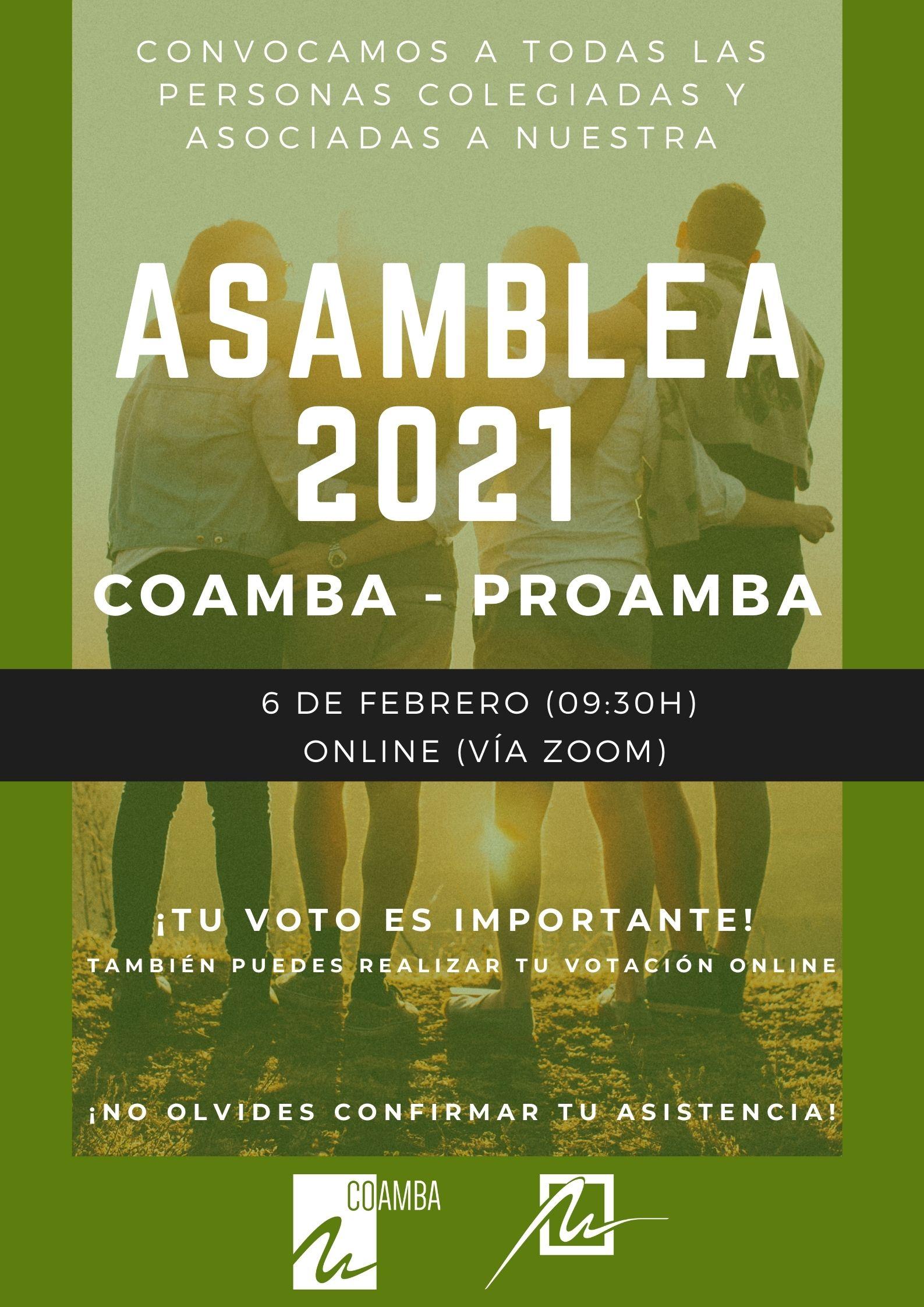 Asamblea General COAMBA - PROAMBA: 6 de febrero de 2021 (Acceso registrado)