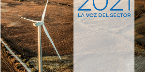 ANUARIO EÓLICO 2021 Un análisis de la situación actual de la eólica en España y en el mundo